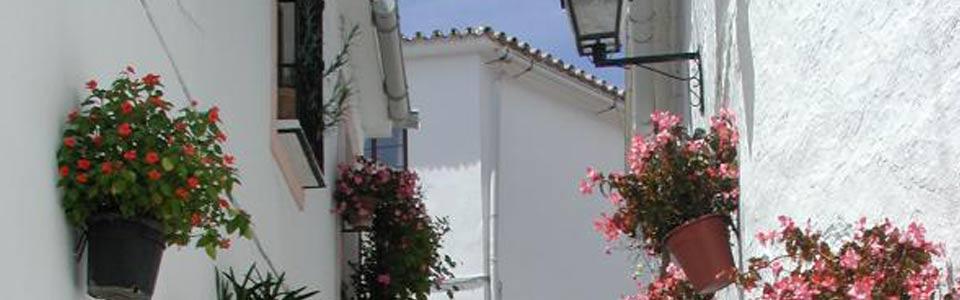 Steegje met bloemen in El Borge