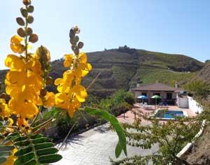 Echt-Andalusie-Vakantiehuis-Casa-Lagar