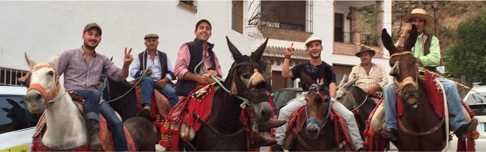 El Borge - in het weekend de paarden van stal
