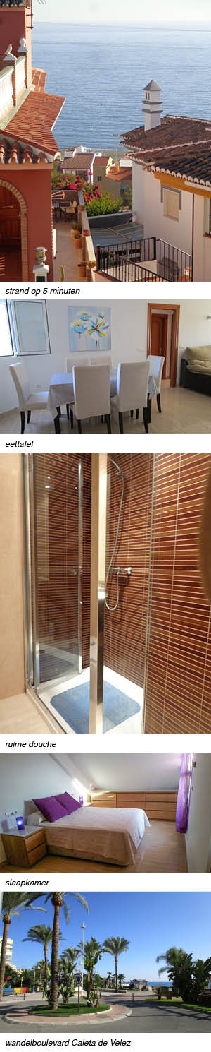 Appartement Caleta interieur en omgeving