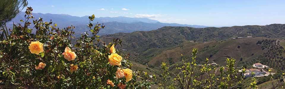 bergen en natuur