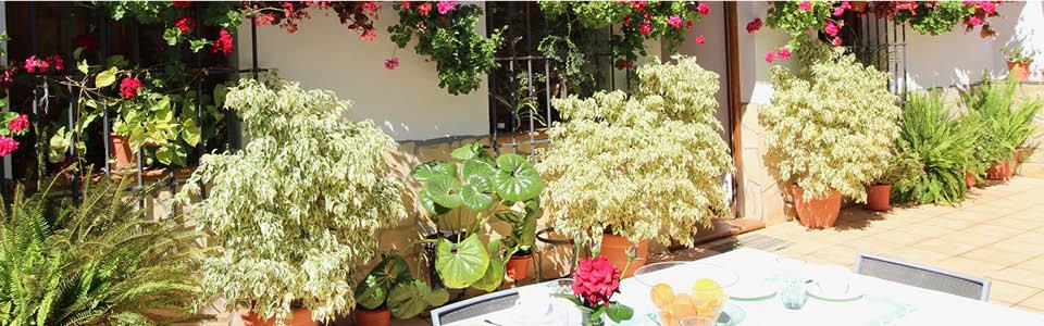 Vakantiehuis Casa Colina - grote eettafel op de bloemenpatio