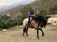 paardrijden bij het vakantiehuis