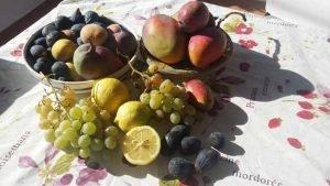 uw fruitschaal bij aankomst in Finca la Palma
