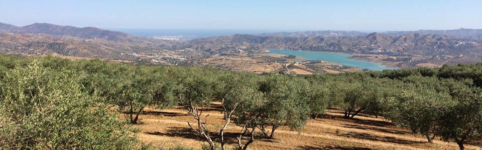 Axarquia in volle glorie vanaf Periana gezien